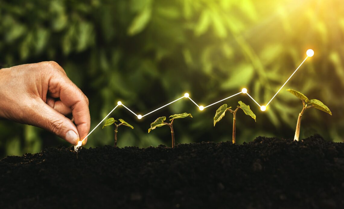ideas for growing sustainable business